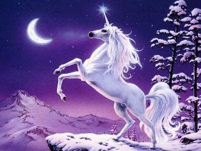 unicorn3r