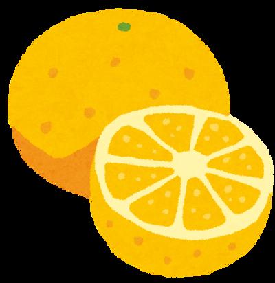 【画像】グレープフルーツと言う名前が納得な実り方をしててワロタwwww
