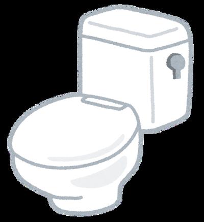 【画像】トイレにブルーレットを置こうとしたら大変な事になったんだが……