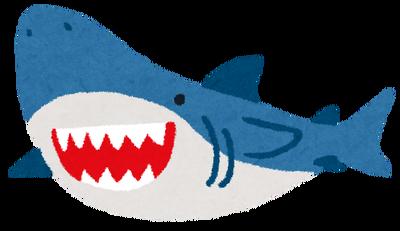 【可愛い】種類も多くてリアルなサメのぬいぐるみ工房が凄すぎるwwww