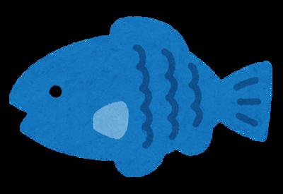 【魚】本物の魚好きが好む魚「アジ」「サバ」「イワシ」「カツオ」