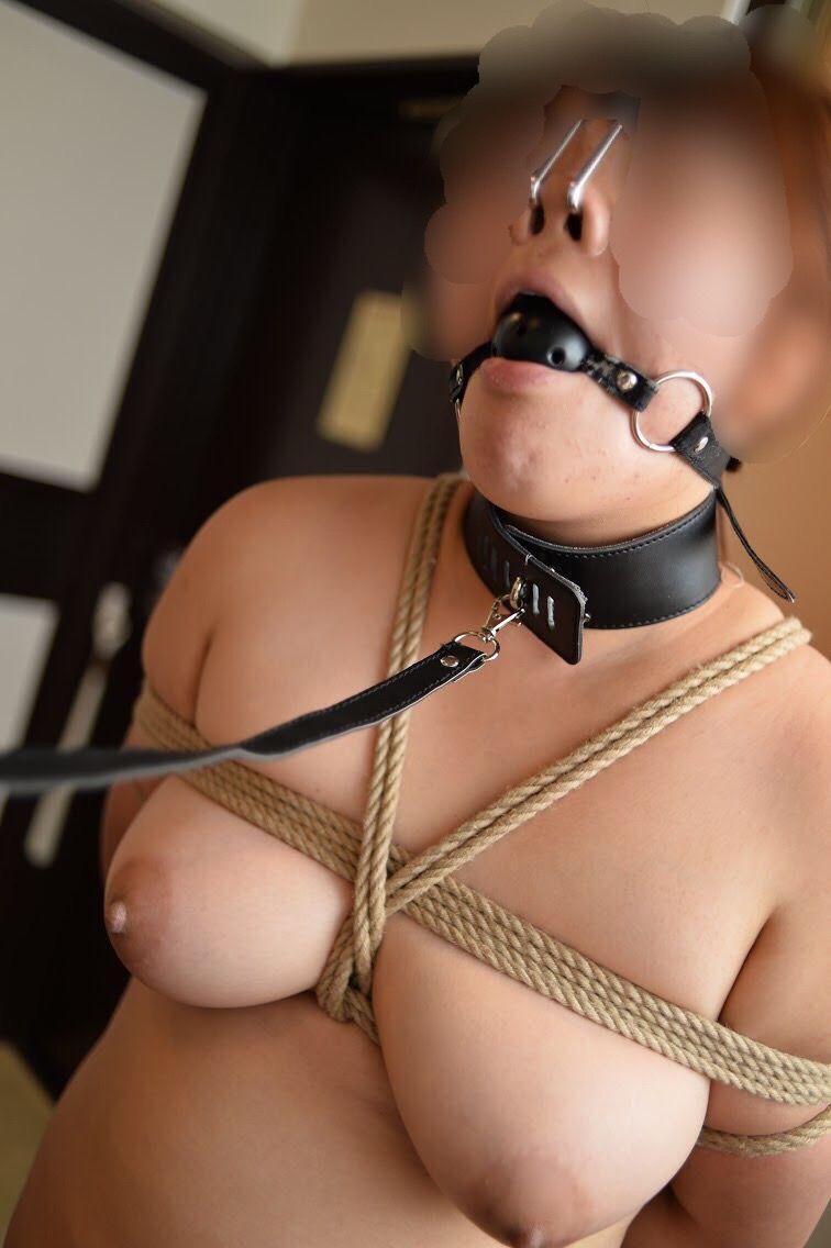 ボールギャグ 鼻フック そんな惨めな状態で、乳首クリップ責め! 豚鼻の家畜犬奴隷がボールギャグの下から言葉にならない呻き声を上げてます。