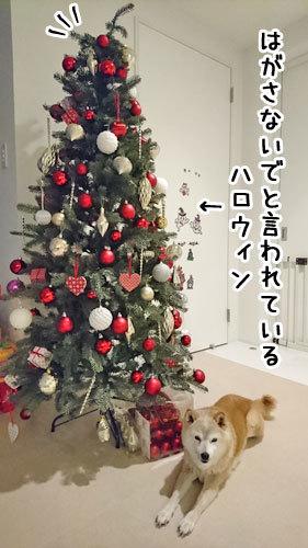 2016-11-12-2.jpg