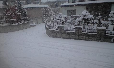 いきなり冬・・・