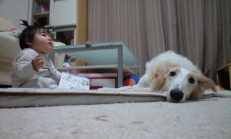 息子とジーナ