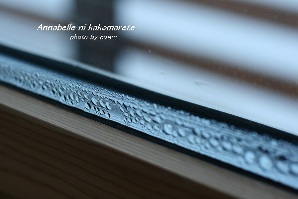 2016.1.26.窓2