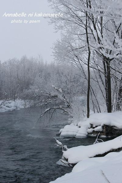 2016.1.16.樹氷2