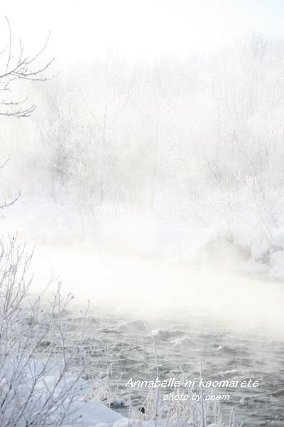 2016.1.25.冬景色2