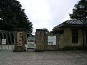 新宿御苑1