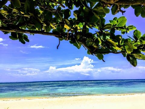 貯まったマイルでANAの航空チケットを予約しヒルトン沖縄 北谷リゾートに宿泊して来ました