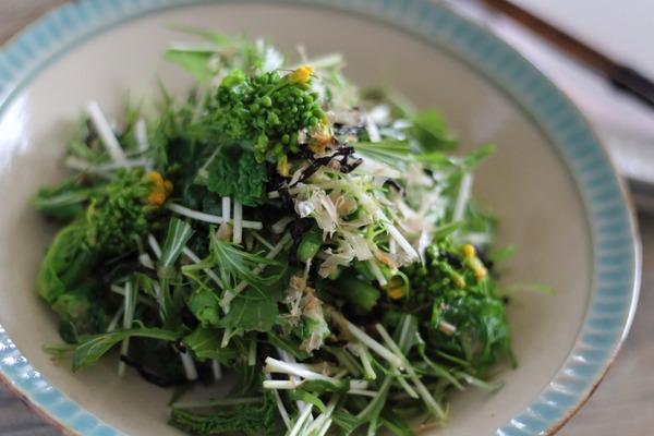 春野菜の旨塩昆布あえ|菜花と菜の花の違いについてetc