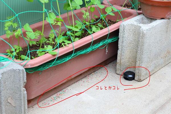 害虫対策に1年に1回だけ買う2種類(家の中と外)/カメムシ・クモ対策のおすすめ