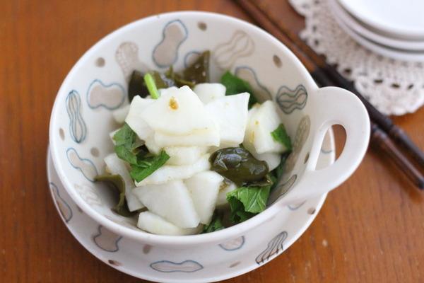 柚子胡椒味の浅漬け大根|ブログ内の人気【浅漬け】レシピ