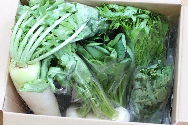 toriii(トリー)のお野菜宅配サービスをレポ