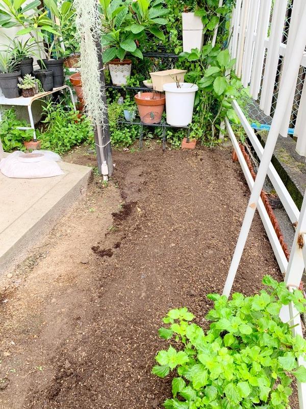 狭い&築50年の庭の全貌写真公開(いつもの写真からは想像つかないでしょw)