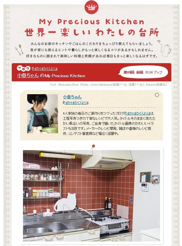 My Precious Kitchen 世界一楽しいわたしの台所 ~キッチンインタビュー~