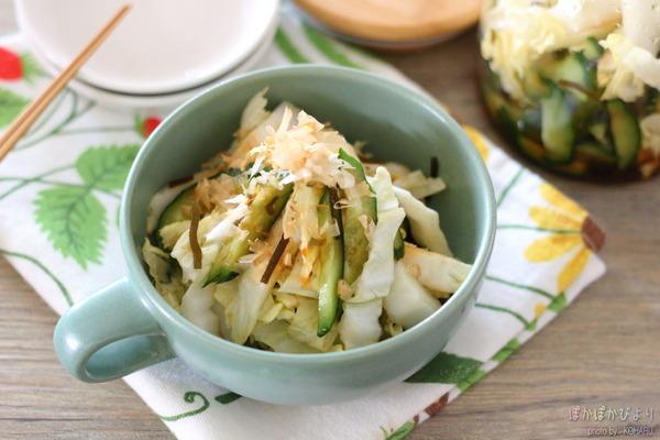 無限白菜(塩こんぶ漬け)/あの塩こんぶと この塩こんぶの違いについて