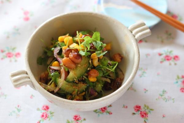 豆苗ととら豆の中華風サラダ