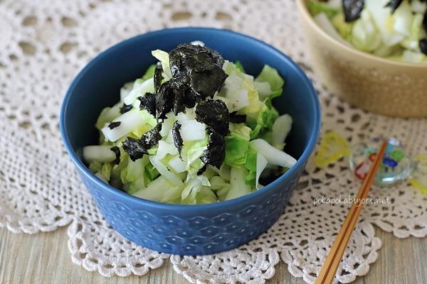 一番美味しい【白菜の簡単おかず】レシピ紹介|のり塩白菜