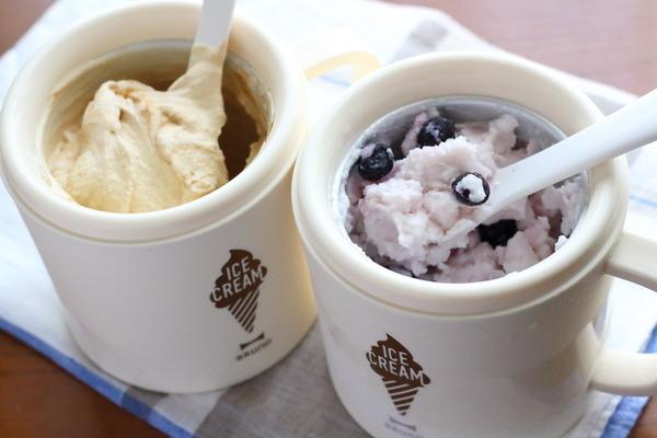 プリン味のアイスとかブルーベリー入りヨーグルトシャーベ|アイスクリームメーカー愛用してますって話