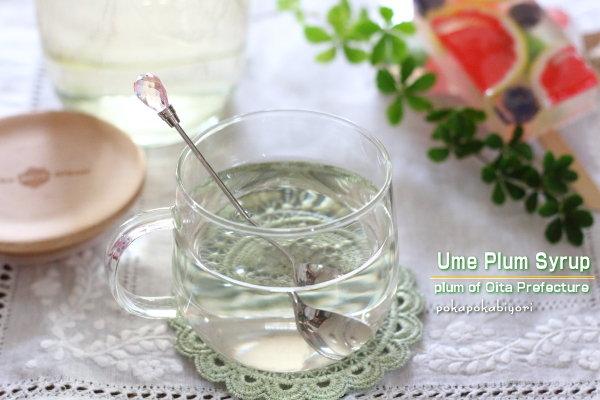 冷凍梅、普通梅の2種類で作る【梅シロップ】を実験してみたんだけど・・・