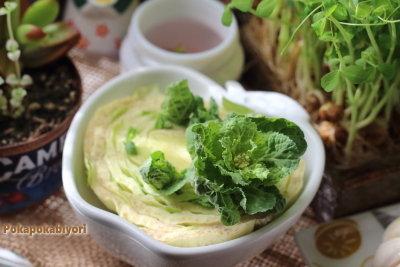 リボベジ≪白菜≫芽が出ました & 豆苗10日目、にんにくの根っこ