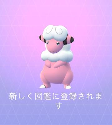 モココ (2)