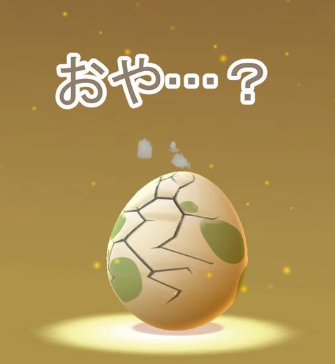 【ポケモンGO】孵化するポケモンって割れる前に一覧にいるよなwwww