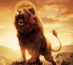 【ポケモンGO】ライオンがモチーフのポケモン、全てダサいwwwwww【画像】