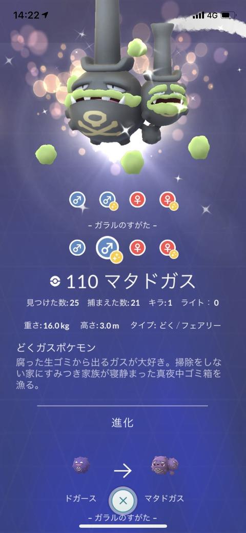 剣盾ドガス色図鑑2