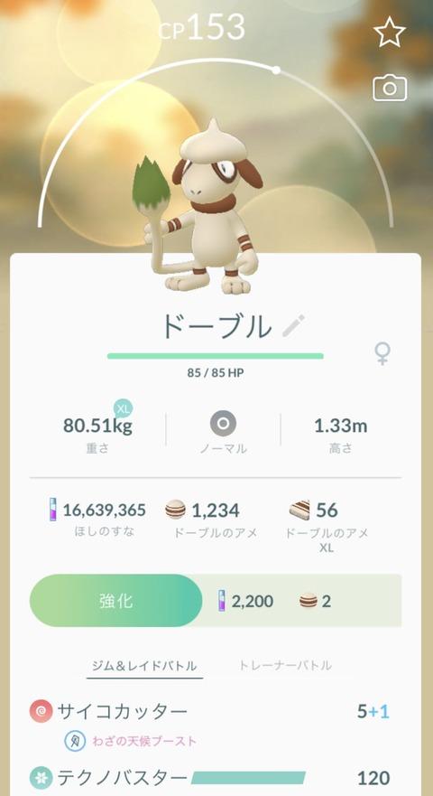 ドーブル技ガチャHOT1