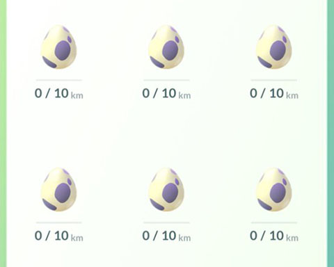 BW10km卵外0
