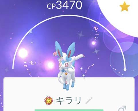 R団ニンフィア00