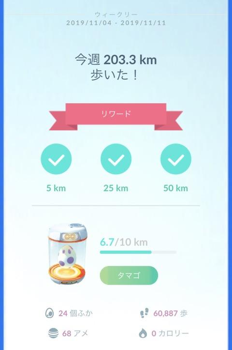 週間50km卵4