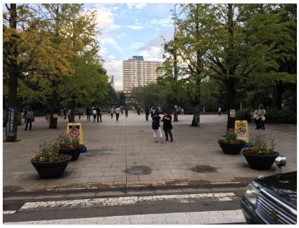 日本橋浜町公園
