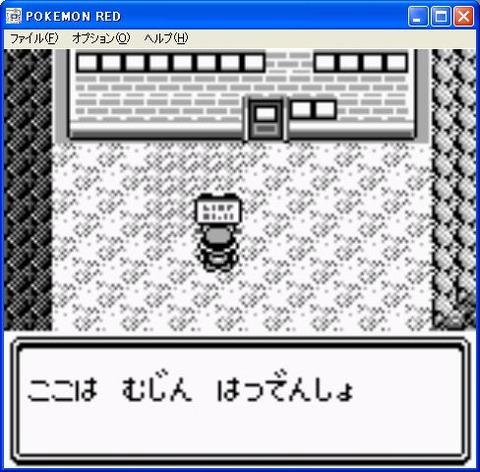 pokemon1105v