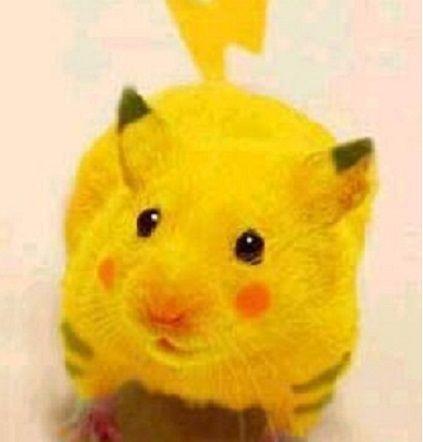 黄色いネズミ