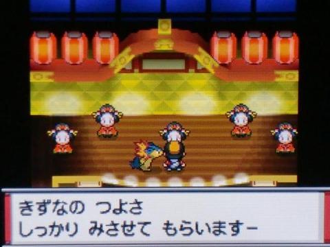 pokemonSS1_100503