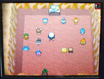 pokemon1015