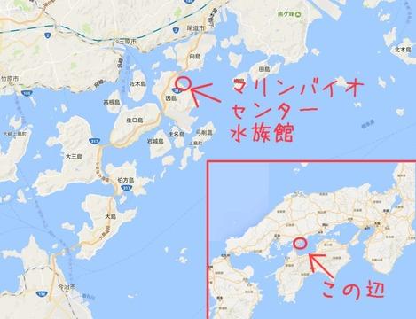 福山大学マリンバイオセンター水族館map