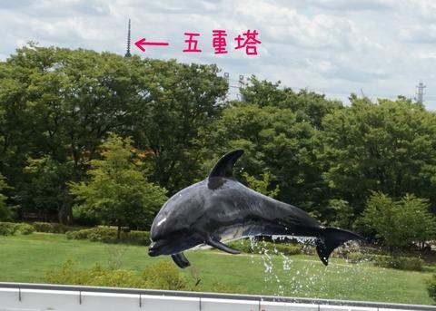 イルカと五重塔