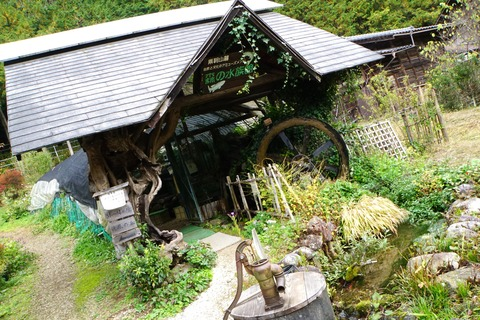 匠の館森の水族館