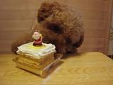 プーのクリスマスケーキ〜♪