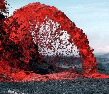 小笠原諸島の画像 p1_19