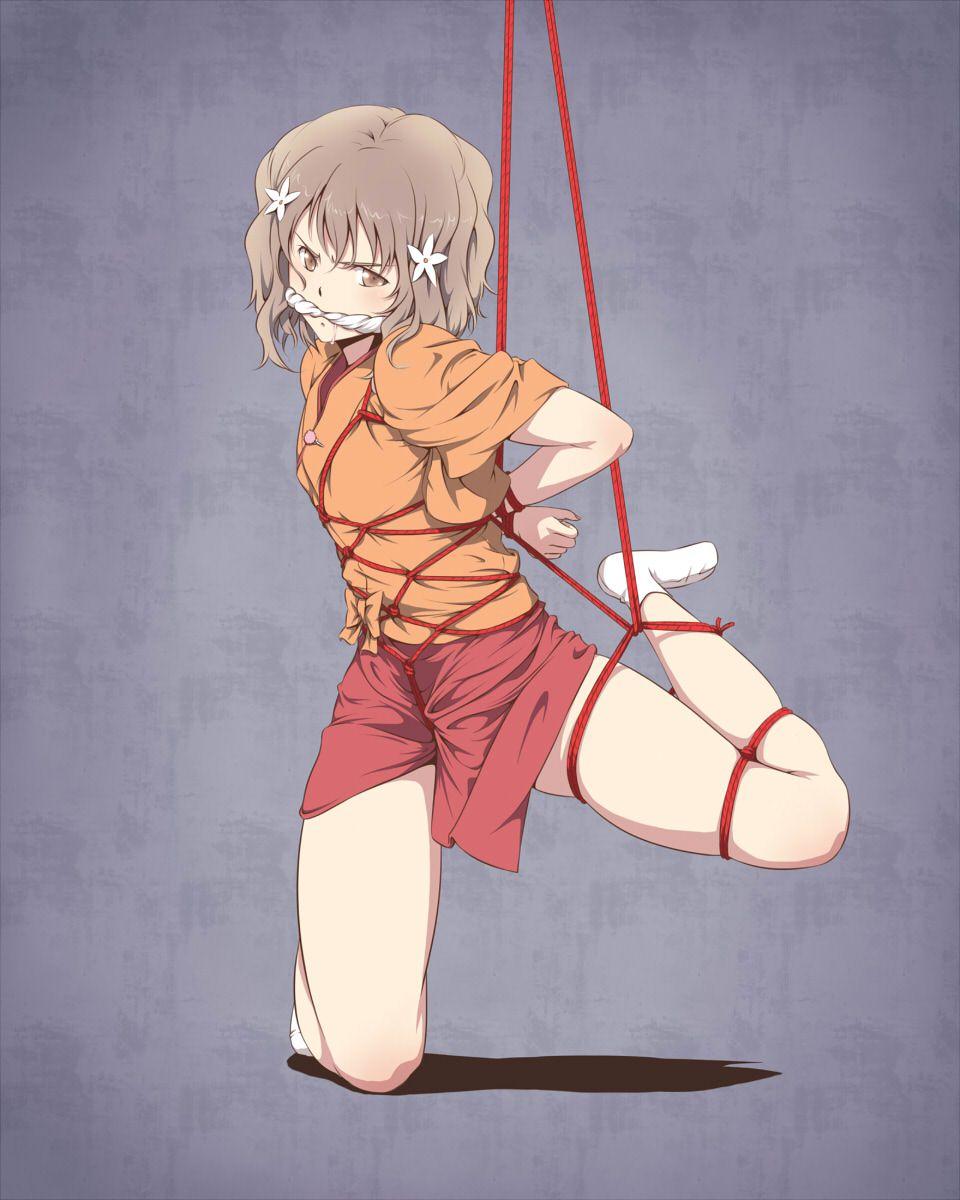 crotch_rope264