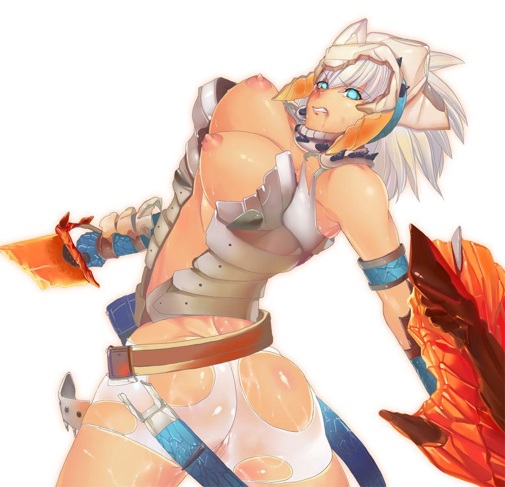 barioth_(armor)050