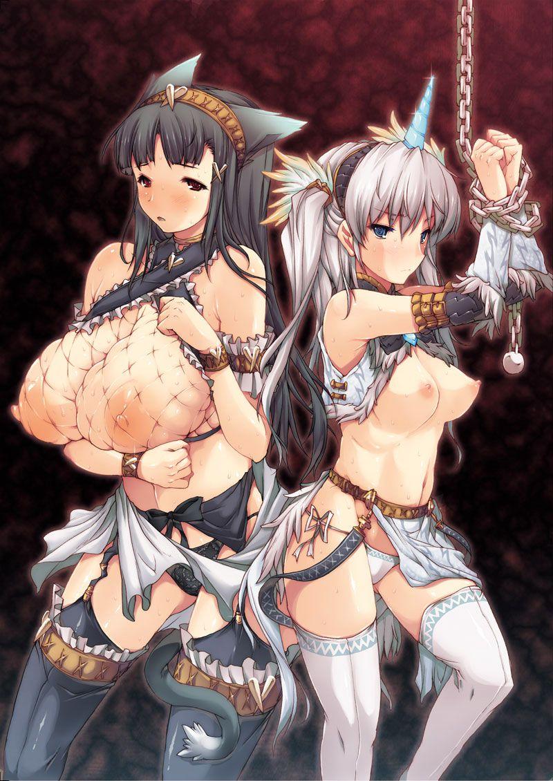 nargacuga_(armor)041
