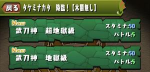 タケミナカタ降臨!