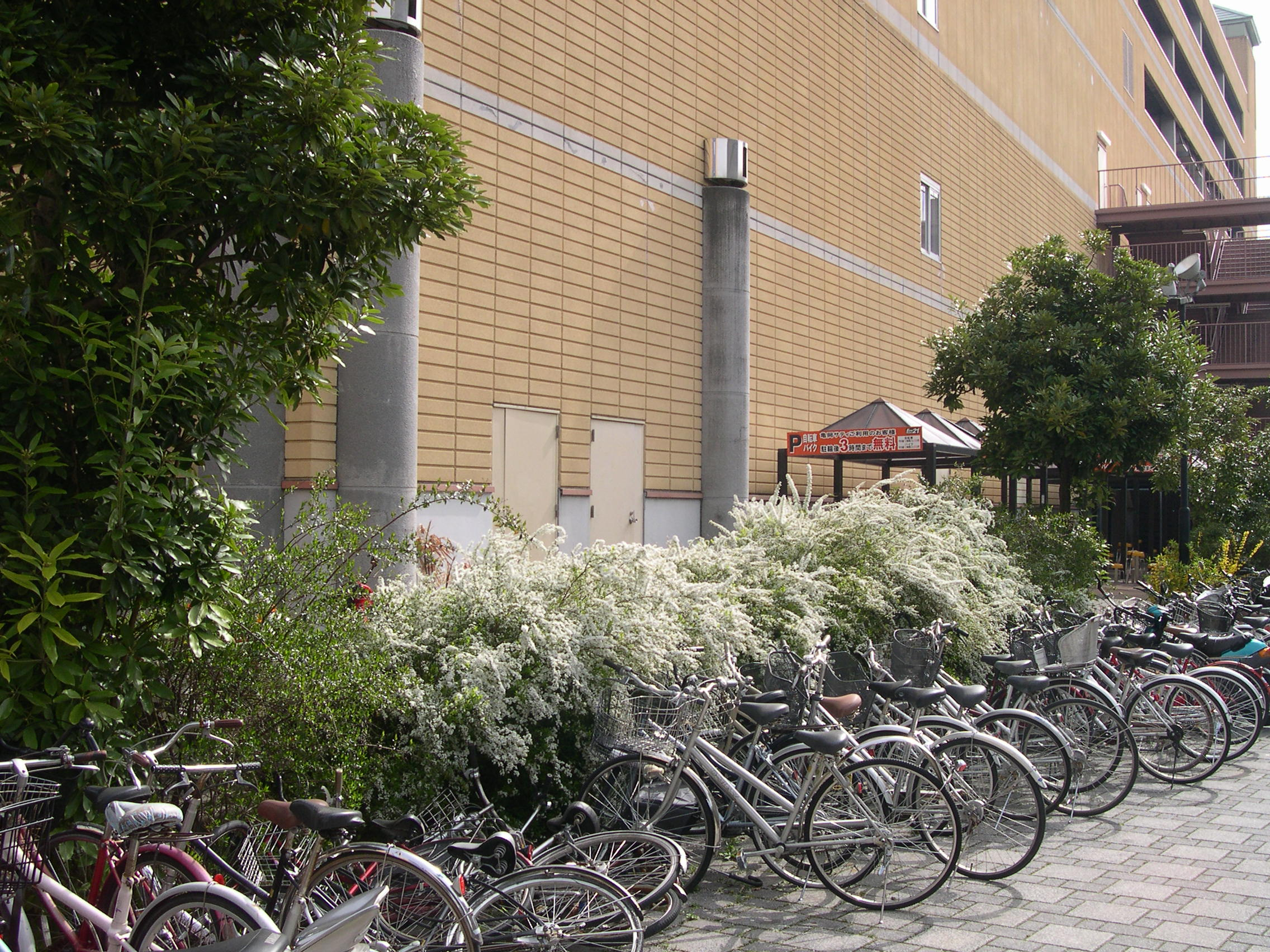 自転車の 京都駅 自転車置き場 無料 : 亀岡の美容室 BEAUTY SHOP ON : 白い ...