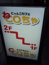 にゃんこカフェ_ねCOちゃ_路地看板